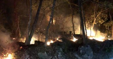 Indagan si incendio en Jalpan fue provocado