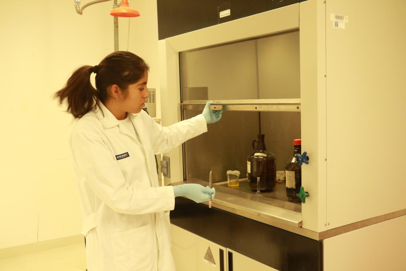 Photo of Estudiantes realizan estancias de investigación en la Universidad Politécnica de Santa Rosa