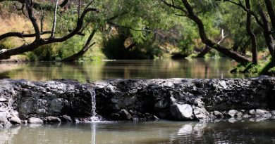 El rescate del Río El Pueblito, una historia del renacer de la vida