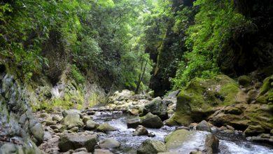 Photo of Buscan reducir emisión de residuos contaminantes en la Sierra Gorda