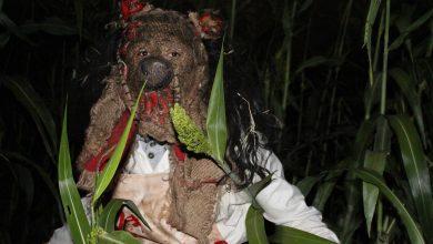 Photo of El Espantapájaros, un espectáculo de miedo