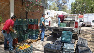 Photo of Entrega DIF Estatal 10 mil kilos de jitomate a los sectores vulnerables