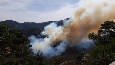 Photo of Se suman SEDENA y Guardia Nacional al combate al incendio en Pinal de Amoles