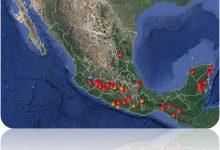 Photo of Hay 37 incendios activos en México, afectan 4 mil 401 hectáreas