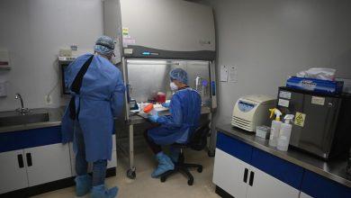 Photo of Seseq ha detectado siete casos de Covid-19 en empresas