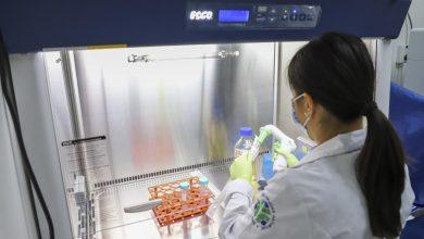 Photo of Protocolo de detección de SARS CoV-2 de la UAQ evitó 70 mil contagios