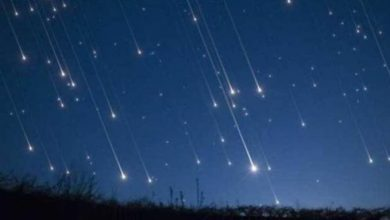 Photo of ¿Has visto una lluvia de estrellas? Mira cuándo y dónde podrás disfrutar de Las Perseidas